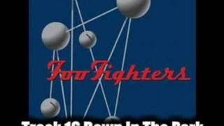 Foo Fighters Down In The Park