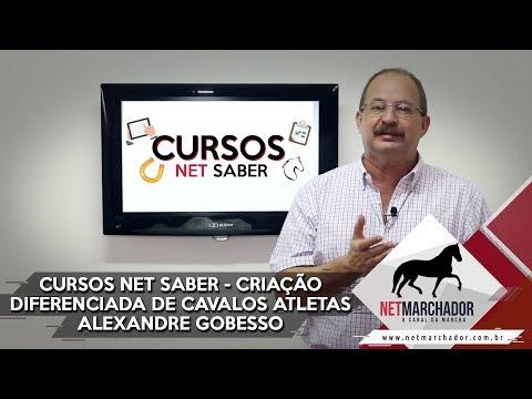 Curso: Criação diferenciada de cavalos atletas - Alexandre Gobesso