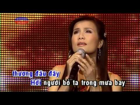 Karaoke Tinh Lo - Hạ Vy ( Beat & Vocal)