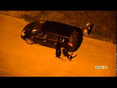 Собаки уничтожают машину