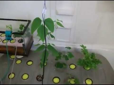 Aeroponic system home made part 12