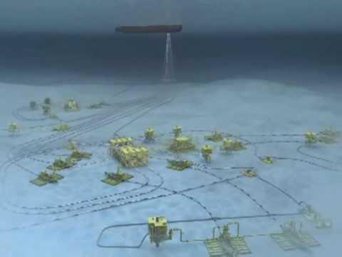Parque das Conchas animation