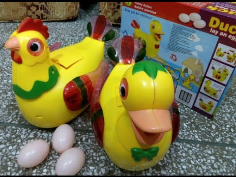 Duck lay an egg & Biddy egg Funny action - Best gift for childran