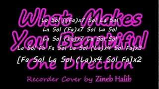 What Makes You Beautiful-One Direction (Flute à Bec