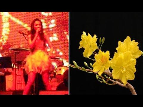Con Bướm Xuân, Hiền Thục, Nhạc Xuân 2014, Giáng Sinh Úc Châu 2013, âm thanh số 1