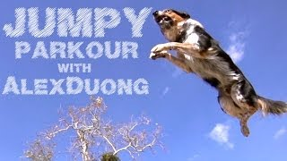 Alex & Jumpy – The Parkour Dog