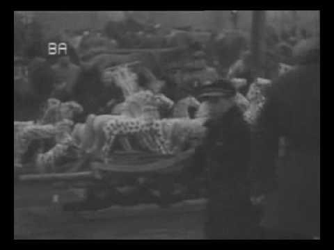 Vilnius,  Kaziukas - 1936 - archyvinis vokiečių filmas