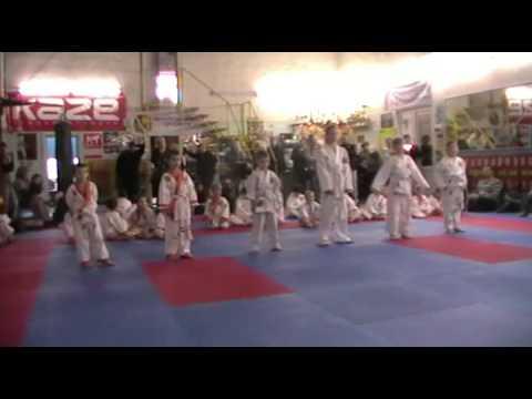 Экзамен по каратэ 3 ноября 2013 года в клубе Тигренок.ч.2