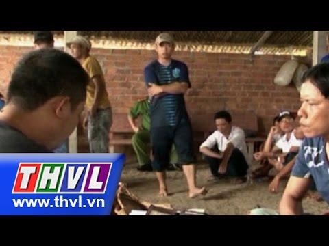 THVL | Triệt phá tụ điểm đá gà quy mô lớn ở Sóc Trăng