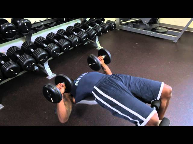 A Decline Press for Sternum Muscles : Exercises for Staying Fit