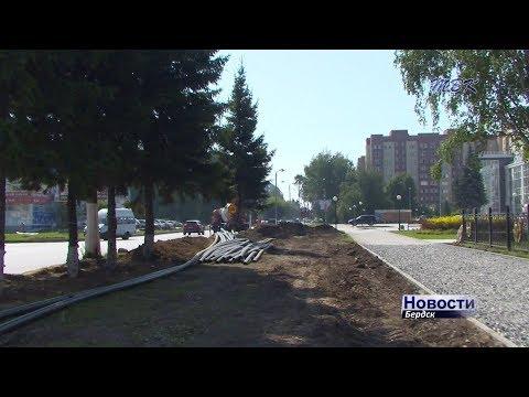 Бердчан тревожит судьба зеленых насаждений вдоль улицы Лунная, на которой идут работы в рамках проекта «Безопасные и качественные дороги»