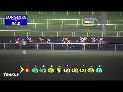 Vidéo de la course PMU WHEELS