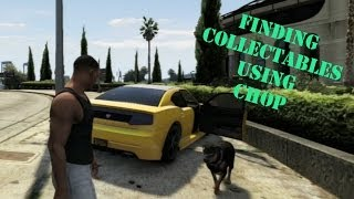GTA V: How To Find Collectables Using Chop