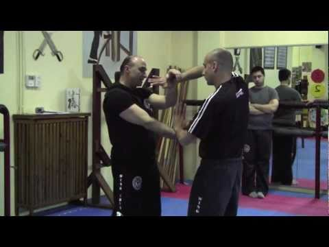 Double-arm Chi Sao - Part 1 - May 2011 Wing Chun Workshop by Master Michael G Papantonakis