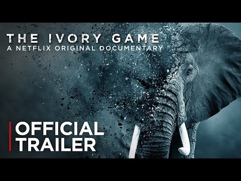 The Ivory Game | Official Trailer