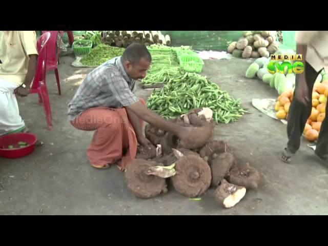 Organic vegetables ready for Vishu