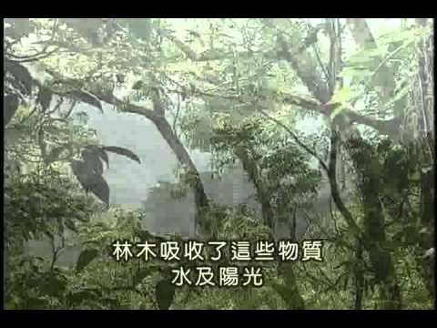 自然保育與生物多樣性(上)