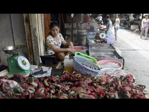 Trung Quốc thu mua vơ vét cua, ghẹ của Việt Nam