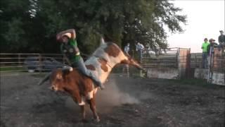 Practice Pen 8-25-13 (Bull Riding)