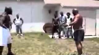 Peleas Callejeras Reales I 2 Black Dudesfight