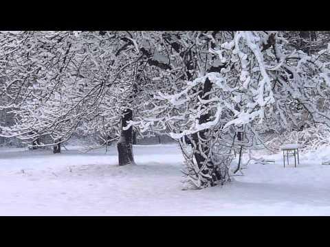 Zimowe sceny z Narnii w Stajni Dorado