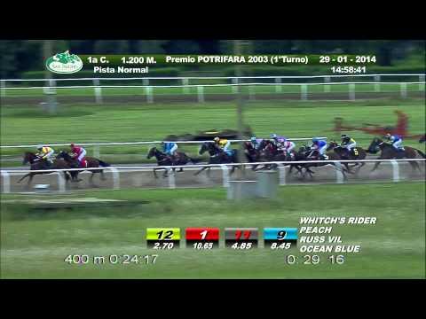 Vidéo de la course PMU PREMIO POTRIFARA 1