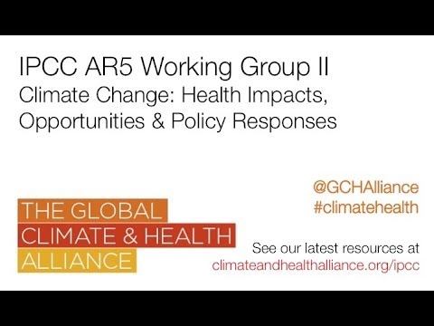 Climate change: health impacts, opportunities and policy responses - webinar re