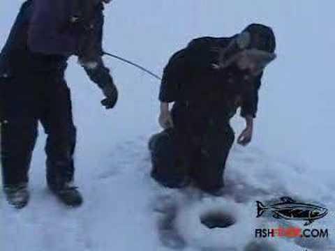 Giant Muskie ( Musky ) Ice Fishing Video