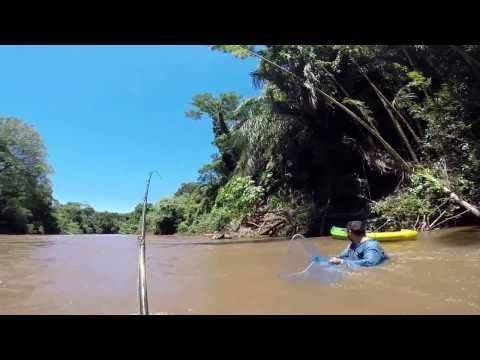 Pesca com caiaque - Dourado de 10 Kg na rodada.