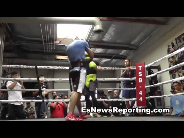 canelo alvarez vs perro angulo trainer breaks it down EsNews Boxing