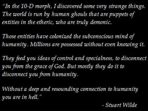 Excerpts from Stuart Wilde