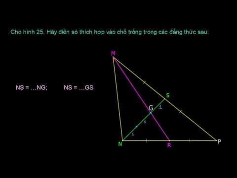 Tính chất ba đường trung tuyến của tam giác | bài 24b/66