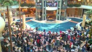 Flashmob At Somerset Mall, Troy, Michigan 08182010