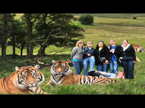 Chester Zoo Ellesmere Port Cheshire West and Chester