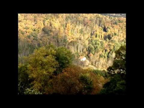 Blue Ridge Parkway Scenic Ride Fall Colors Epic höstfärger سیکسی امریکہ 山に乗る