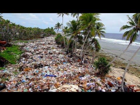 ONU: o plástico está cobrindo e destruindo nosso planeta