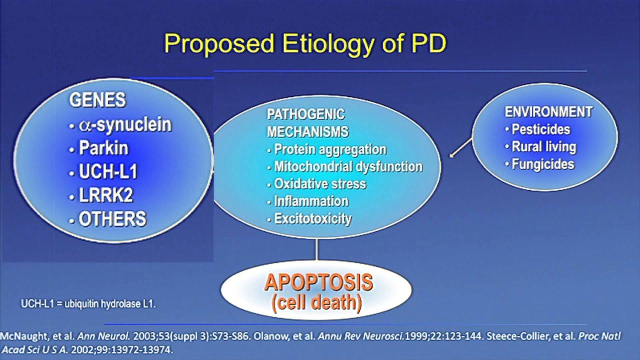 Early Onset Idiopathic Parkinsons Disease Youtube