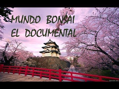 Documental de Mundo Bonsai,  EPISODIO-1
