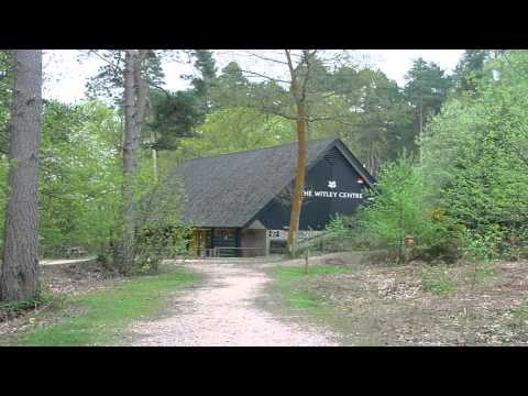 The Witley centre Godalming Surrey