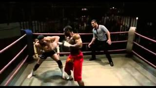 Best Fight Scenes Of UNDISPUTED 2 ! Yuri Boyka Scott