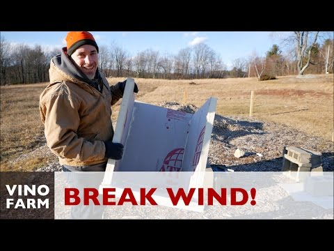 Breaking Wind for the Bees!