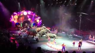Ringling Brothers Circus at Amway Center- Orlando