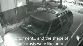 REAL UFO ALIENS CAUGHT ON CAMERAS, NOT PICTS OR WEIRD