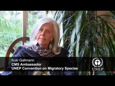 Kuki Gallmann, CMS Ambassador, on World Wildlife Day 2014