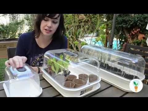 Mini invernaderos para semilleros