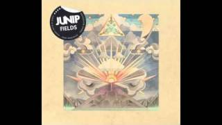 Soundtrack - Junip » Don't Let It Pass