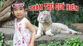 BÉ ĐI CHƠI VƯỜN THÚ 🤣 Đi chơi sở thú thăm động vật hoang dã ♥ Dâu Tây Channel