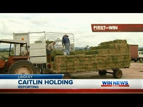 Qld Drought Coverage: SEQ Farmers Organise Hay Drive (Part 1) - WIN News Rockhampton (Dec 17, 2013)