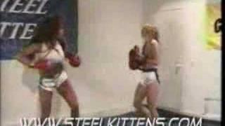 Foxy Boxing Champ Vol 1