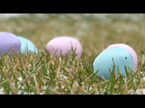Easter Events in Osseo